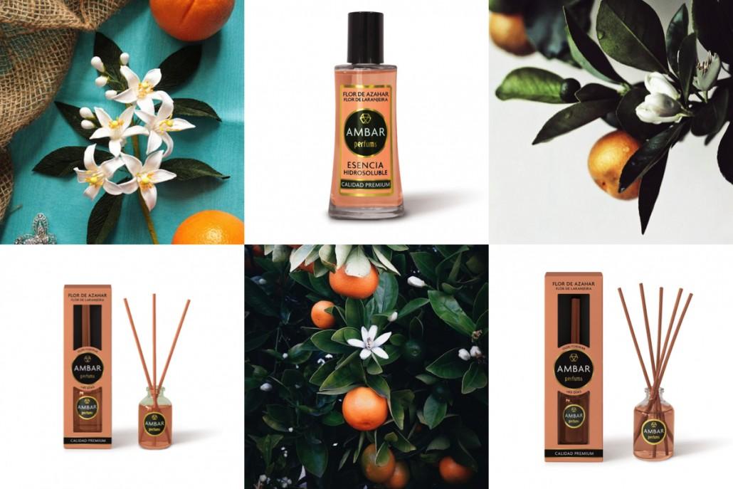 ambar-perfums-aroma-flor-de-azahar