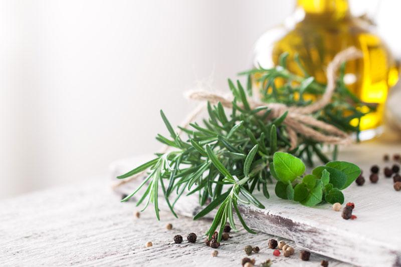 ambar-perfums-beneficios-y-propiedades-del-romero